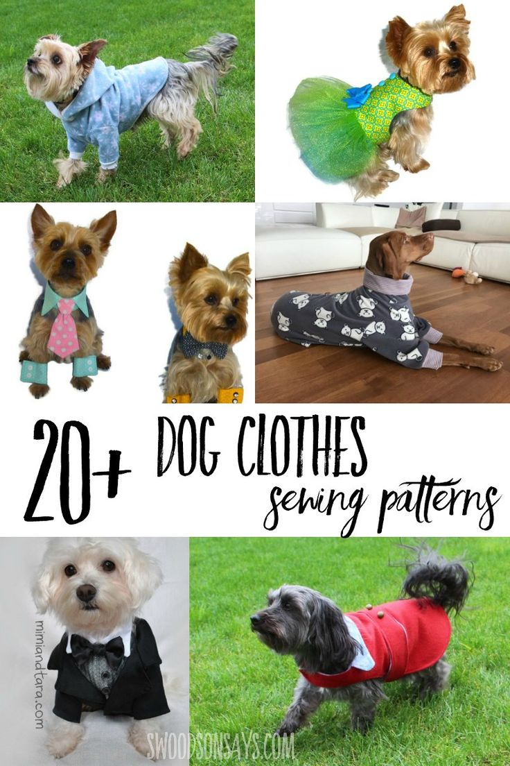Cutest Paid Free Printable Dog Clothes Patterns Dog