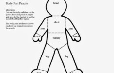 Pin On Body Parts